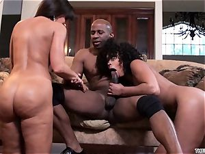 Lisa Ann and Misty Stone drool over this rigid stiffy